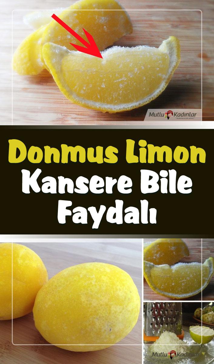 Dondurulmuş limon mucizevi etkiler barındırıyor!